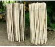 Chestnut fencing 9.2m rolls 1.2m high
