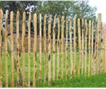 Chestnut fencing 9.2m rolls 1.2m high
