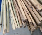 Bamboo Canes 9/11lb 3'0