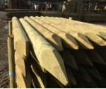 1.8m x 100mm Ptd machined KILN DRIED